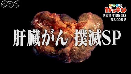 ためしてガッテン 11月12日 肝臓がん.jpg