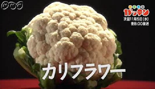 ためしてガッテン 11月5日 カリフラワー.jpg