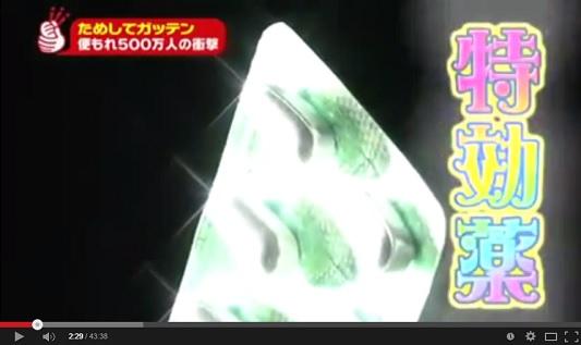 ためしてガッテン 12月10日 便失禁の実態と治療法 動画.jpg