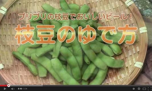 ためしてガッテン 9月3日 枝豆の茹で方 動画.jpg