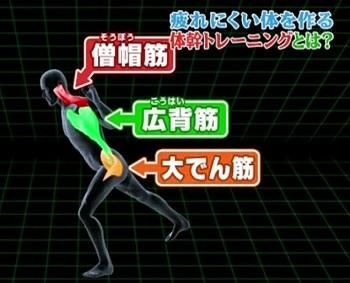 疲れない体を作る体幹トレーニング4.jpg